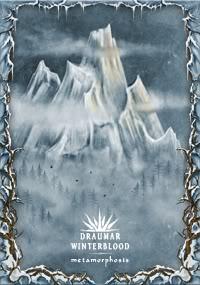 WINTERBLOOD / DRAUMAR - Metamorphosis