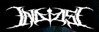 IN DEMISE - Adapting The Disorder