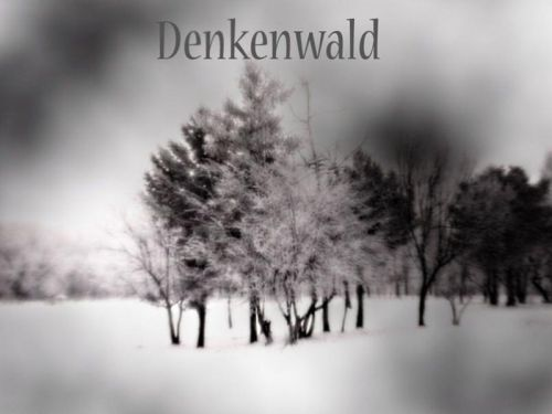 DENKENWALD - Demo