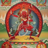 SHABDA - The Electric Bodhisattva