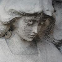 IROHA - Shepherds Angels