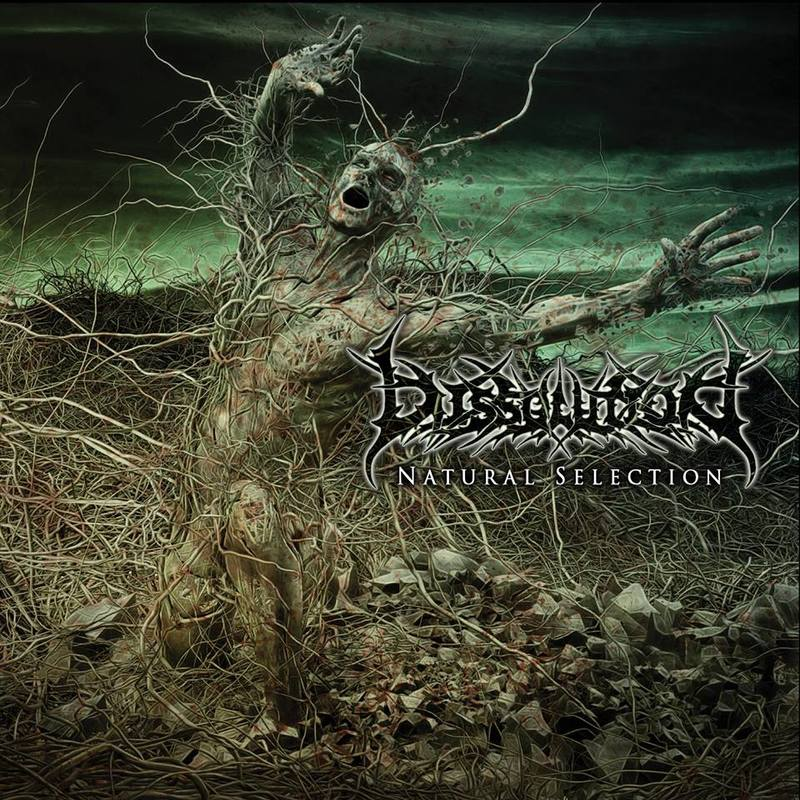 DISSOLUTION - Natural Selection