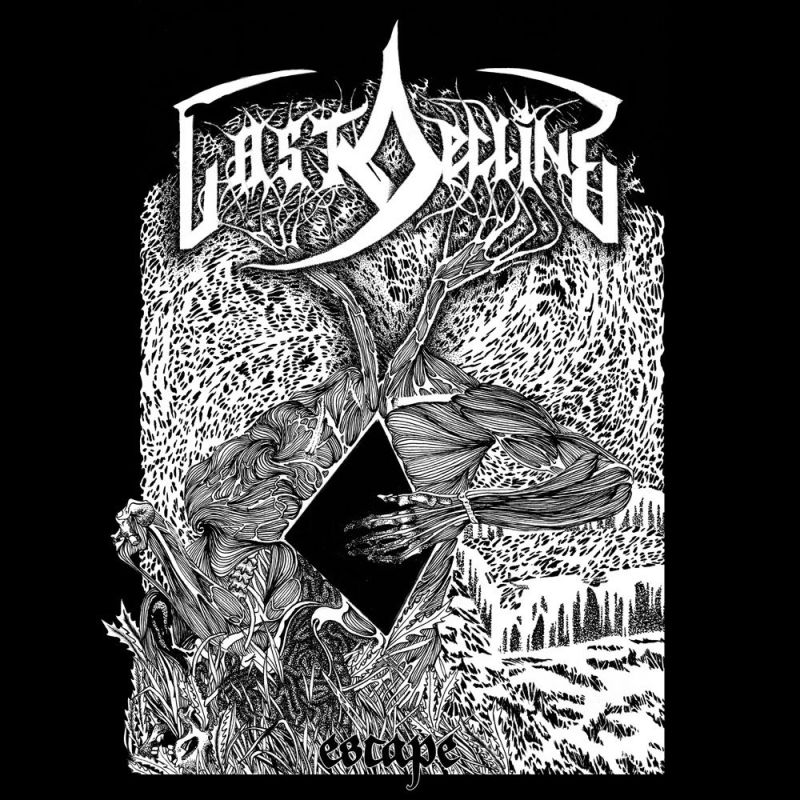 LAST DECLINE - Escape