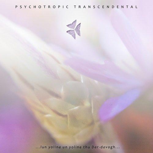 PSYCHOTROPIC TRANSCENDENTAL - ...Lun Yolina Un Yolina Thu Dar-davogh...