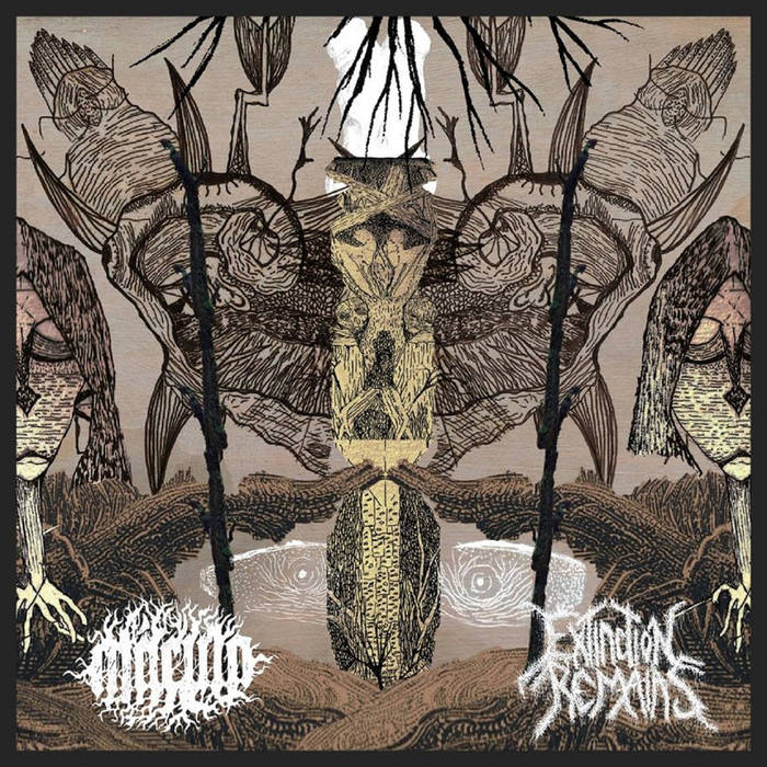 MACULA / EXTINCTION REMAINS - Split