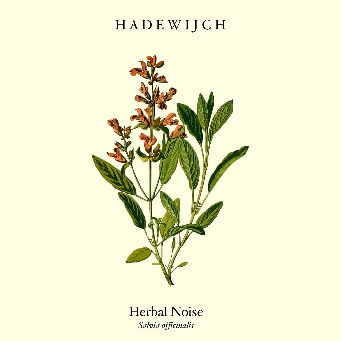 HADEWIJCH - Herbal Noise