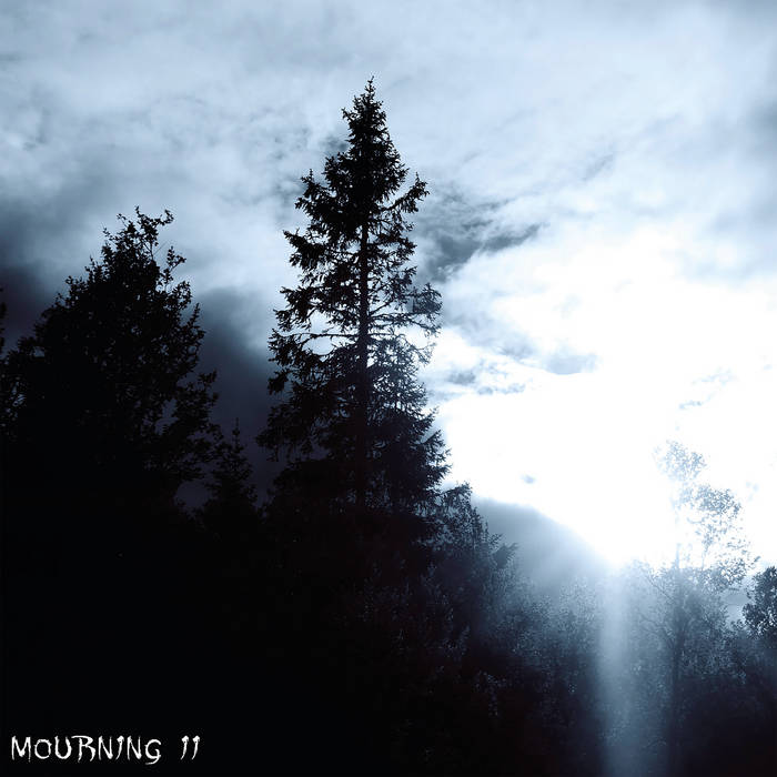 LOST IN DESOLATION - Mourning II