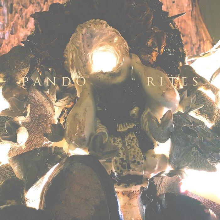 PANDO - Rites